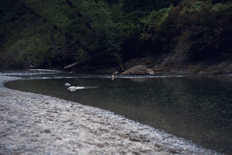 Landscape image of a river at Golden Ears Provincial Park