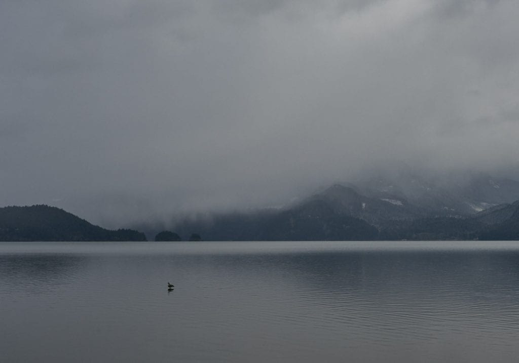 Moody image of a Canada goose standing on a rock in a lake with cloud covered mountains in the background