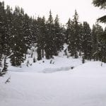 Image of snow dusted trees and large snow banks covering First Lake at Dog Mountain