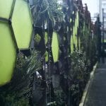 Dividing wall utilising plants and geometric metal to disguise a parking lot in Egmont Street in Wellington