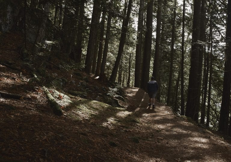 A man walks on a track through the forest at Killarney Lake loop during a Thanksgiving getaway on Bowen Island