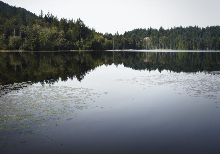 Reflections of the treeline in Killarney Lake during a Thanksgiving getaway on Bowen Island