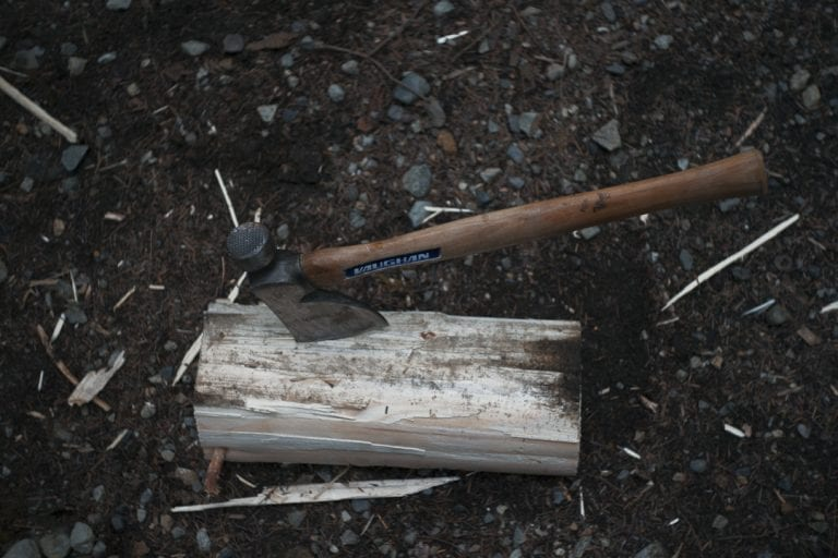 Image of an axe in a log in a campground at Golden Ears Provincial Park