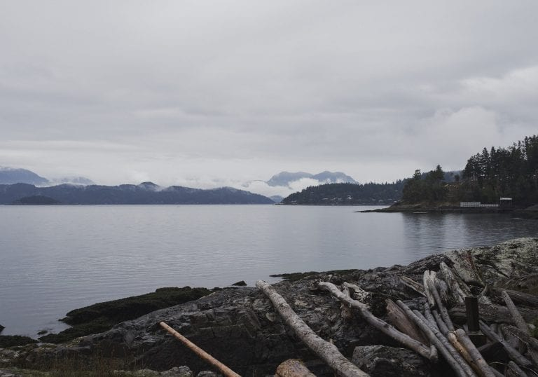 View of the water and surrounding islands with driftwood in the foreground at Pebbly Beach during a Thanksgiving getaway on Bowen Island