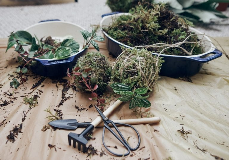 Image of kokedama being made during a workshop at Connally McDougall studios by Vancouver workshop photographer Angela McConnell
